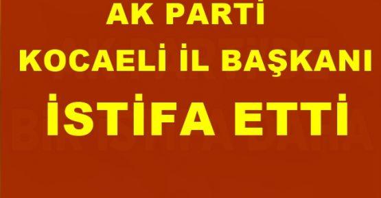 AK Parti Kocaeli İl Başkanı Eryarsoy istifa etti