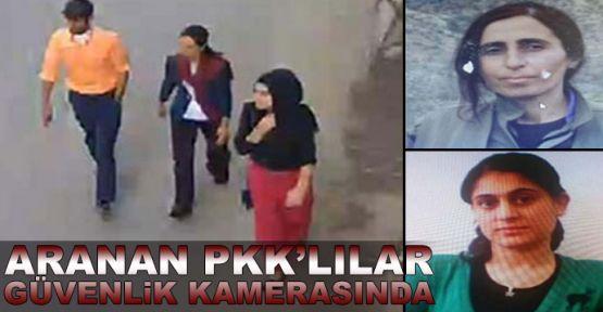 Aranan 3 PKK'lı güvenlik kamerasına takıldı