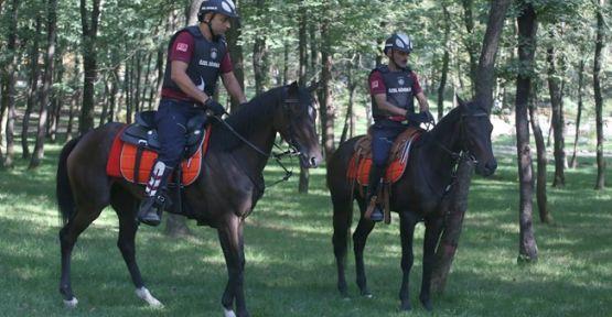 Büyükşehir atlı güvenlik, iş başında