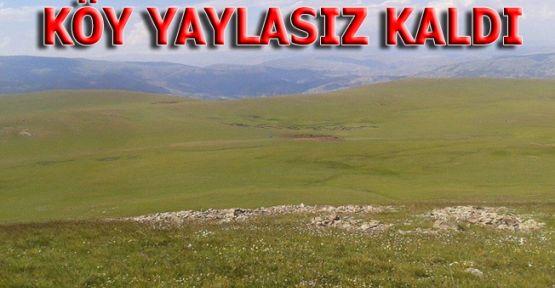 Erzurum Dörtyol köylüleri yaylalarını istiyor!