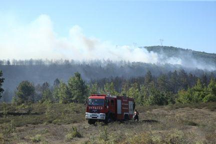 Gebze'de çıkan büyük orman yangını söndürüldü