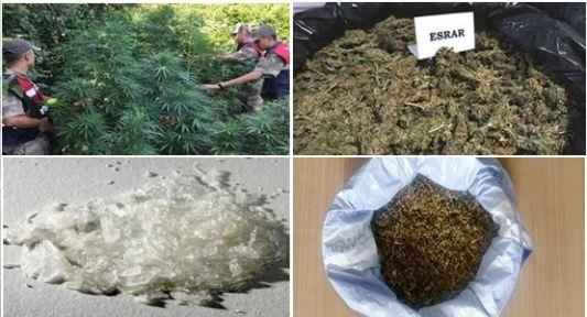 Kocaeli'nin Ağustos ayı  uyuşturucu raporu açıklandı