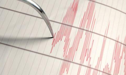 Muğla'da 4,6 büyüklüğünde deprem meydana geldi