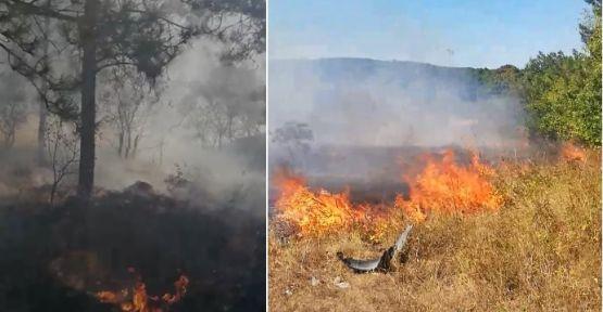 Ormanlık alanda çıkan yangın tekne fabrikasına sıçradı