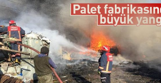 Palet Üretim tesisinde yangın
