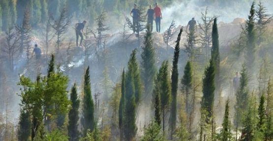 Polis ekiplerinin müdahalesiyle yangın büyümeden söndürüldü