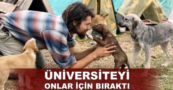 Sokak hayvanları için üniversiteyi bıraktı