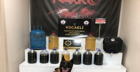 TEM'de durdurulan TIR'da 51 kilo 500 gram uyuşturucu ele geçirildi