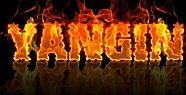 Eskihisar'da korkutan yangın...