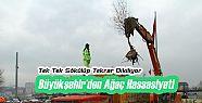 Orman Bakanlığı'ndan Yeşil Berat Ödülü...