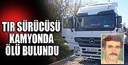 TIR sürücüsü kamyonda ölü bulundu...
