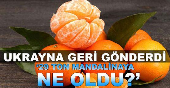 'Ukrayna'dan geri gönderilen 29 ton mandalinaya ne oldu?'