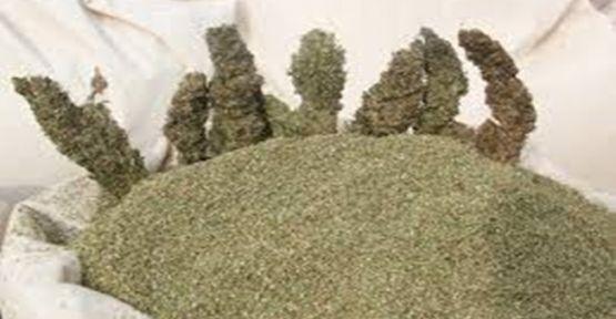 Kocaeli Emniyet Müdürlüğü'nden Narkotik suçlarla ilgili açıklama