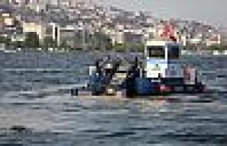 50 günde 150 ton deniz salyası toplandı