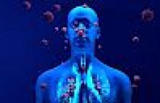 Bağışıklık Sistemini Zayıflatan Faktörler