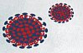 Koronavirüs'te Yeni Belirtiler Ortaya Çıktı