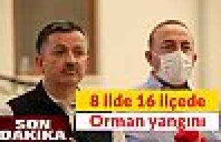 Pakdemirli'den kritik açıklama Türkiye'de 8 ilde...