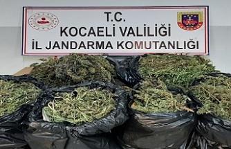 Kocaeli'de bir evde 25 kilo 685 gram esrar ele geçirildi